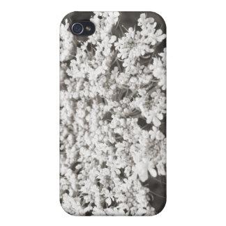 Spitze der Königin-Anne iPhone 4 Case