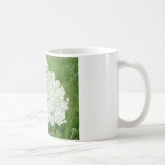 Spitze der Königin-Annes Kaffeetasse