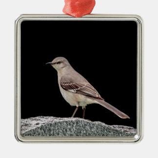 Spottdrossel auf einem Grabstein Silbernes Ornament