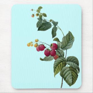 Sprigs der Frucht Mousepads