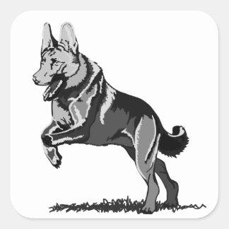Spring Schäferhund Quadratischer Aufkleber