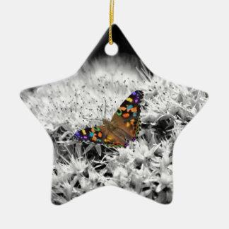 Spritzen des Flatterns Keramik Stern-Ornament