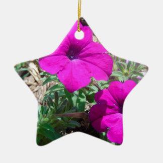 Spritzen von Lila Keramik Stern-Ornament