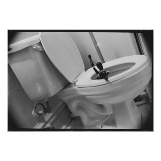 Spülen Sie unten die Toilette Poster