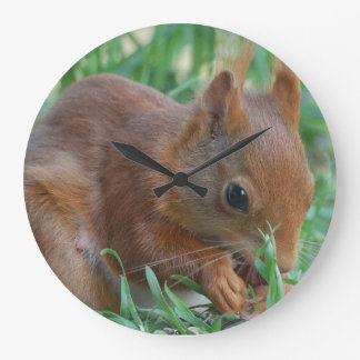 Squirrel ~ Écureuil ~ Eichhörnchen  ~ by GLINEUR Große Wanduhr