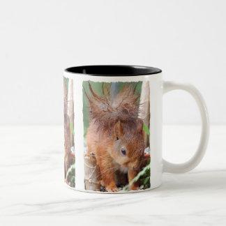 Squirrel ~ Écureuil ~ Eichhörnchen ~ by JL GLINEUR Zweifarbige Tasse