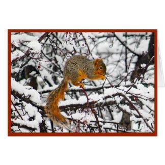 Squirrel in der Weihnachtskarte des Schnee-6142 Karte