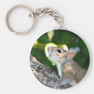 Squirrely! keychain schlüsselanhänger
