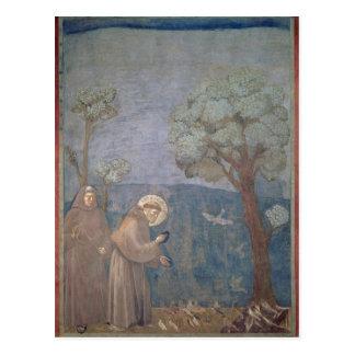 St Francis, das zu den Vögeln, 1297-99 predigt Postkarte