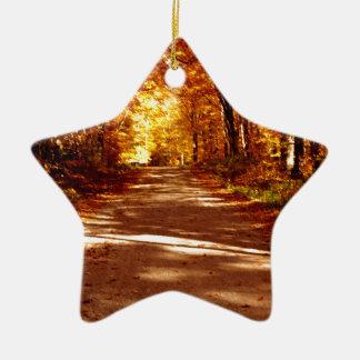 St- Josephinsel-Fall-Ausflug Keramik Stern-Ornament