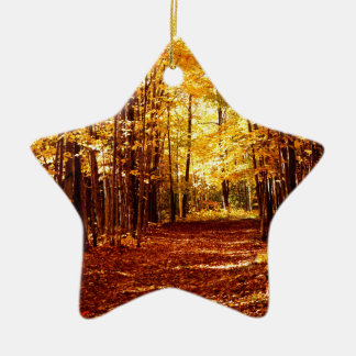 St- Josephinsel-Fall-Farben Keramik Stern-Ornament