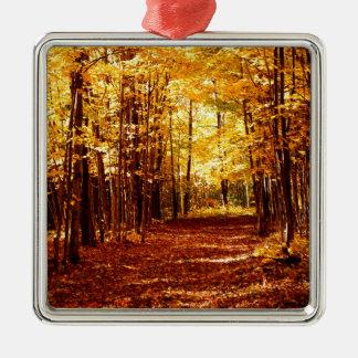 St- Josephinsel-Fall-Farben Quadratisches Silberfarbenes Ornament