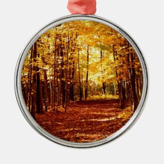 St- Josephinsel-Fall-Farben Rundes Silberfarbenes Ornament