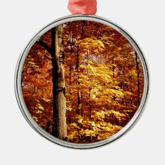 St- Josephinsel-Zuckerahorne Silbernes Ornament