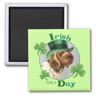 St Patrick Tag Griffon Quadratischer Magnet