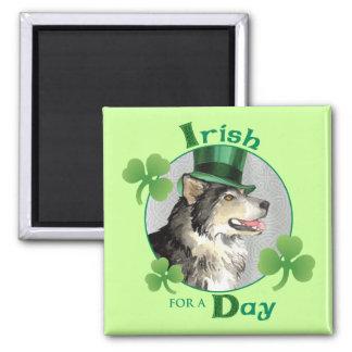 St Patrick Tag Malemute Quadratischer Magnet