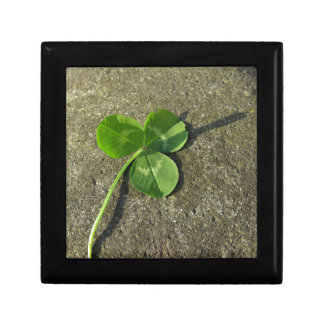 St Patrick Tageshintergrund mit Klee-Kleeblatt Erinnerungskiste