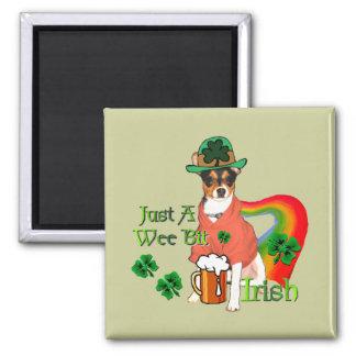 St Patrick Tagesratte Terrier Quadratischer Magnet