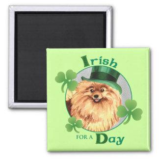 St Patrick TagesSpitz Quadratischer Magnet