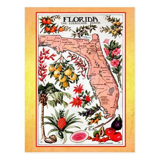 Staats-Karte von Florida (Vintage Neuauflage) Postkarte