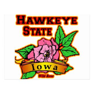 Staats-wilde Rose Iowas Hawkeye Postkarte