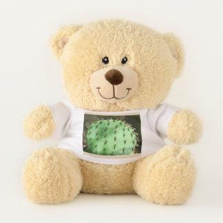 Stachelige Birne im Cartoonteddy-Bären Teddybär