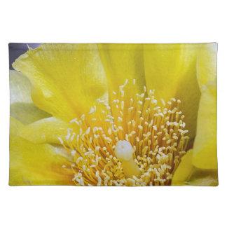 Stachelige Birnen-Kaktus-Blüten-Stoff-Tischset Tischset