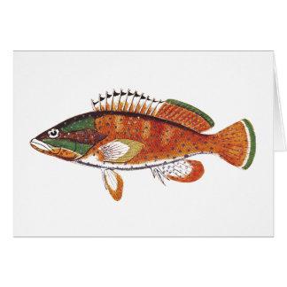 Stachelige gemalte Fische Karte