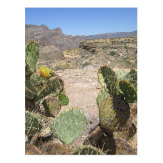 Stacheliger Kaktus Fisch-Nebenfluss-Hügel-Vista Postkarte