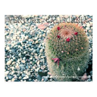 Stacheliger Ventura Postkarte