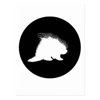 Stachelschwein Postkarte