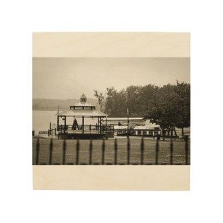 Stadt der Fotografie der Hudson-Ufergegend-B&W Holzwanddeko
