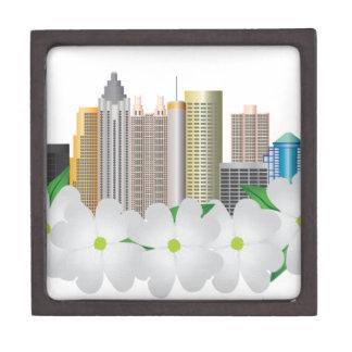 Stadt-Skyline Atlantas Georgia mit Hartriegel Schachtel