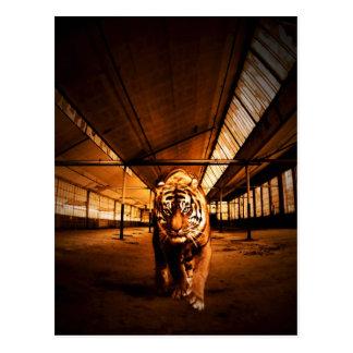 Städtischer Tiger Postkarte