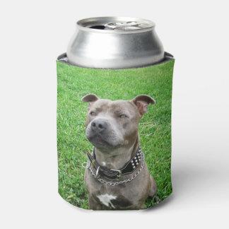 Staffordshire-Bullterrier, Dosenkühler