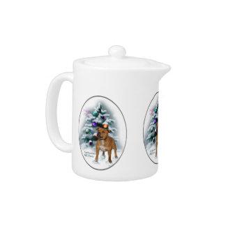 Staffordshire-Bullterrier-Weihnachten