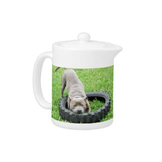 Staffy_Playing_With_Tyre_Tea_Pot.
