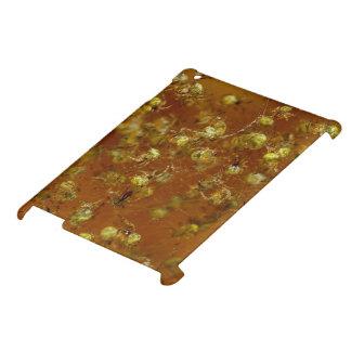 Stallspinnen Hüllen Für iPad
