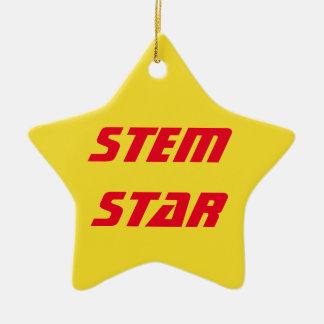 STAMM Stern-Verzierung Keramik Ornament