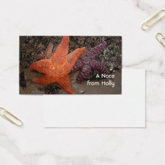 Starfish/Seesterne, Kanonen-Strand ODER, Foto 1 Visitenkarte