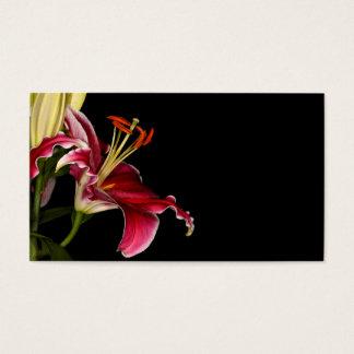 Stargazer-Lilie Visitenkarte