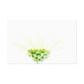 Stark vereinfachte Zinnia-Blumen-Leinwand Leinwanddruck