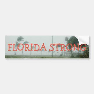 Starker Autoaufkleber Floridas