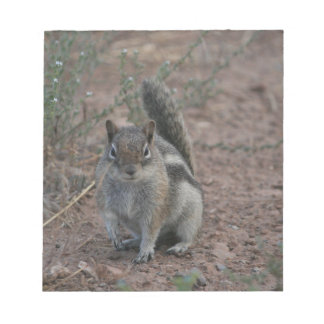 Starkes Eichhörnchen Notizblock