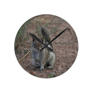 Starkes Eichhörnchen Runde Wanduhr
