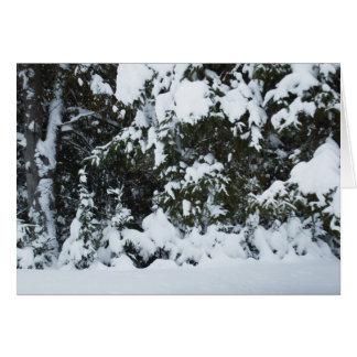 Starkes Schneefälle auf Baum-Leerer Karte