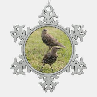 Starlings Schneeflocken Zinn-Ornament
