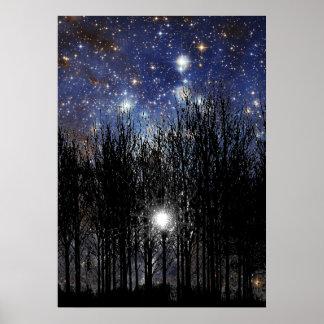 Starscape u. Bäume - Plakat