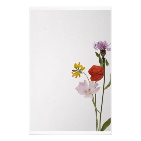 Stationery colorful flowers briefpapier