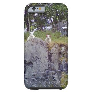 Stationieren und stehende Schafe Tough iPhone 6 Hülle